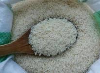 قیمت برنج شمال