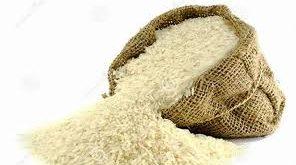 اعطای نمایندگی برنج شمال