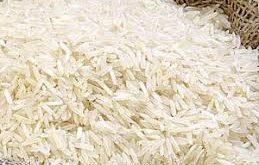 نمایندگی برنج