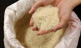 فروش عمده برنج
