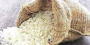 خرید اینترنتی برنج ارگانیک شمال