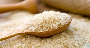 قیمت برنج محلی