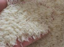تهیه عمده برنج