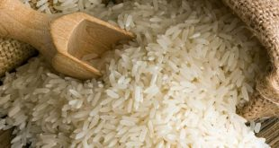 خرید برنج آستانه