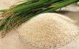 برنج شکسته شمال