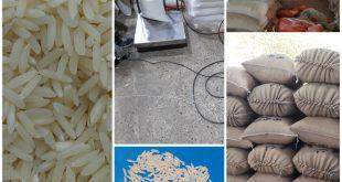 تولید کننده برنج