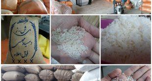 خرید بهترین برنج