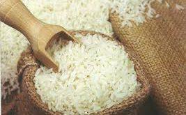 تولید برنج هاشمی