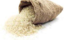 خرید برنج شیرودی