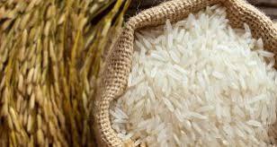 تهیه برنج هاشمی