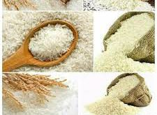 فروش برنج درجه یک