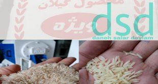 قیمت خرید برنج دودی