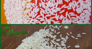 برنج نوج
