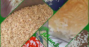 انواع برنج مرغوب ایرانی