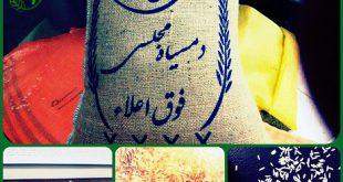 برنج دم سیاه گیلان