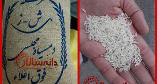 قیمت برنج محلی دم سیاه
