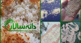 برنج نیم دانه کیلویی چند
