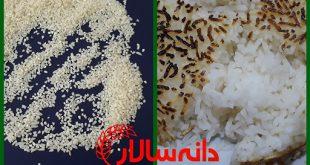 فروش برنج لاشه