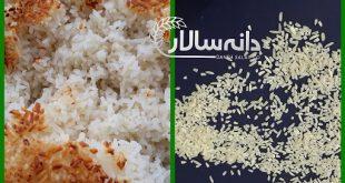 قیمت برنج لاشه