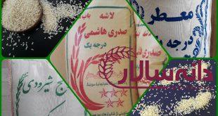 فروش برنج ایرانی ارزان
